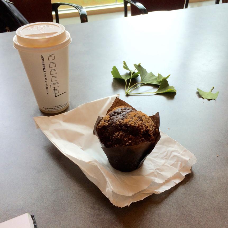 13-muffin