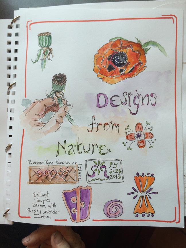 6-nature design